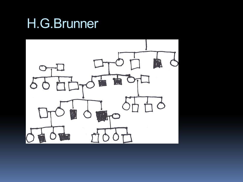 H.G.Brunner