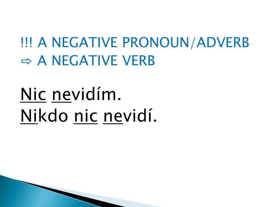 !!! A NEGATIVE PRONOUN/ADVERB ⇨ A NEGATIVE VERB Nic nevidím. Nikdo nic nevidí.