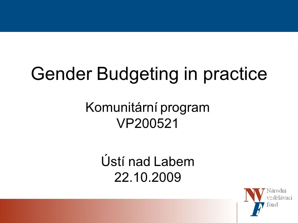 Gender Budgeting in practice Komunitární program VP200521 Ústí nad Labem 22.10.2009