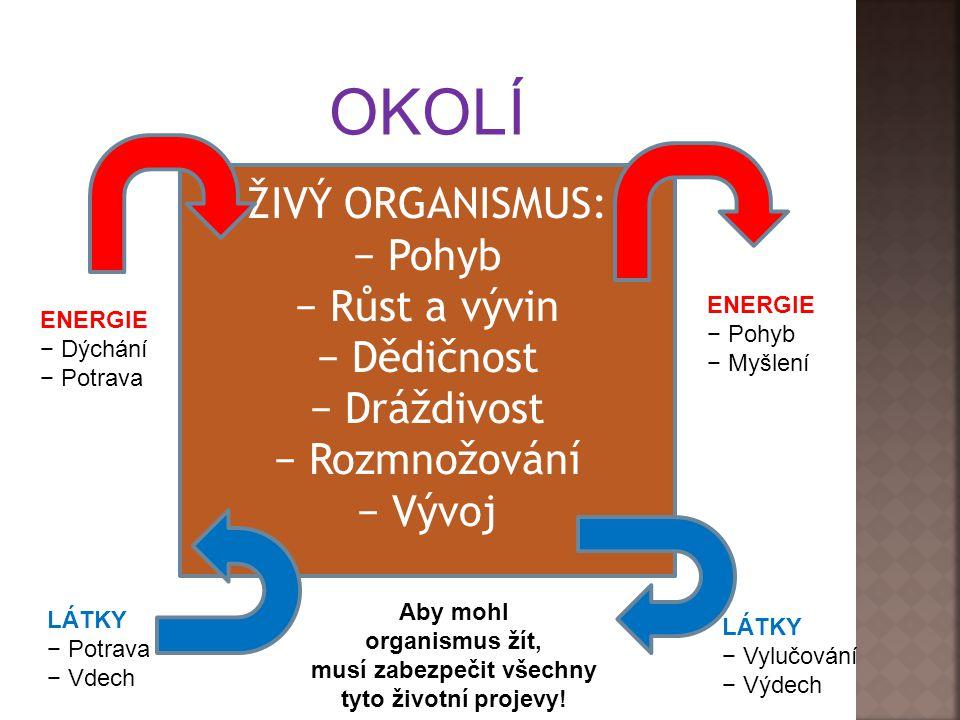 ŽIVÝ ORGANISMUS: − Pohyb − Růst a vývin − Dědičnost − Dráždivost − Rozmnožování − Vývoj OKOLÍ ENERGIE − Dýchání − Potrava ENERGIE − Pohyb − Myšlení LÁTKY − Potrava − Vdech LÁTKY − Vylučování − Výdech Aby mohl organismus žít, musí zabezpečit všechny tyto životní projevy!