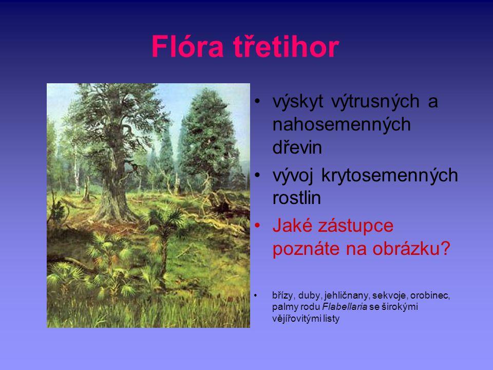 Flóra třetihor výskyt výtrusných a nahosemenných dřevin vývoj krytosemenných rostlin Jaké zástupce poznáte na obrázku? břízy, duby, jehličnany, sekvoj