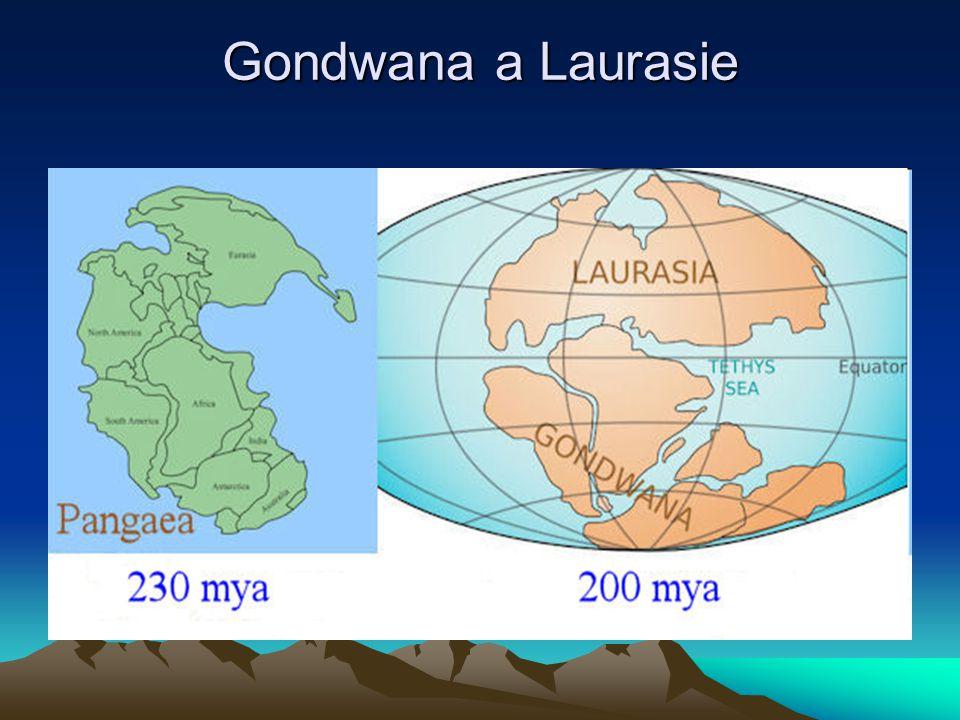 prvohory Geologie: ke konci prvohor vznikají šelfová pásma, mělké jezerní pánve, bohatě osídlené rostlinami a živočichy.