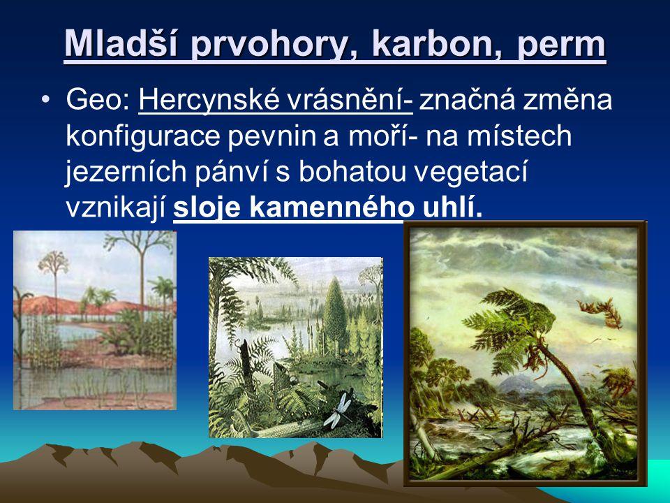 Fauna, flóra mladších prvohor Fauna: rozvoj systematických ryb, vznikají první obojživelníci, plazi, některé primitivní formy vymírají( trilobiti)