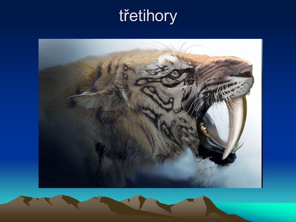 Čtvrtohory(= kvartér) Trvá více než 2 milióny let Starší pleistocén Mladší holocén( 10 tisíc let, doba současná) Antropozoikum( doba spjatá s člověkem a jeho vývojem) Pleistocén- STARŠÍ DOBA KAMENNÁ( paleolit) Holocén- STŘEDNÍ DOBA KAMENNÁ( mezolit) - MLADŠÍ DOBA KEMENNÁ( neolit)