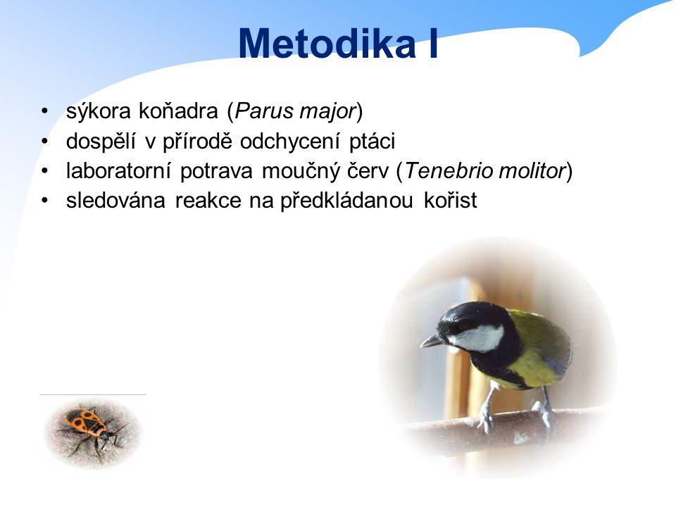 Metodika I sýkora koňadra (Parus major) dospělí v přírodě odchycení ptáci laboratorní potrava moučný červ (Tenebrio molitor) sledována reakce na předkládanou kořist
