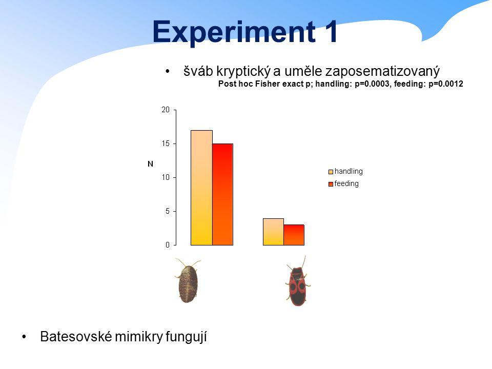Experiment 1 šváb kryptický a uměle zaposematizovaný Batesovské mimikry fungují Post hoc Fisher exact p; handling: p=0.0003, feeding: p=0.0012