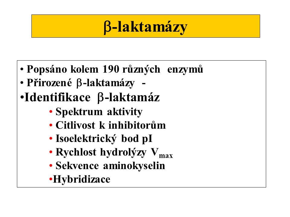  -laktamázy Popsáno kolem 190 různých enzymů Přirozené  -laktamázy - Identifikace  -laktamáz Spektrum aktivity Citlivost k inhibitorům Isoelektrický bod pI Rychlost hydrolýzy V max Sekvence aminokyselin Hybridizace