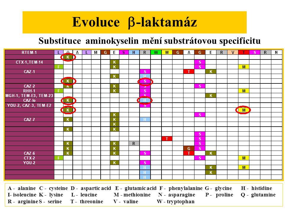 Evoluce   -laktamáz A - alanine C - cysteine D - aspartic acid E - glutamic acid F - phenylalanine G - glycine H - histidine I- isoleucine K - lysine L - leucine M - methionine N - asparagine P - proline Q - glutamine R - arginine S - serine T - threonine V - valine W - tryptophan Substituce aminokyselin mění substrátovou specificitu