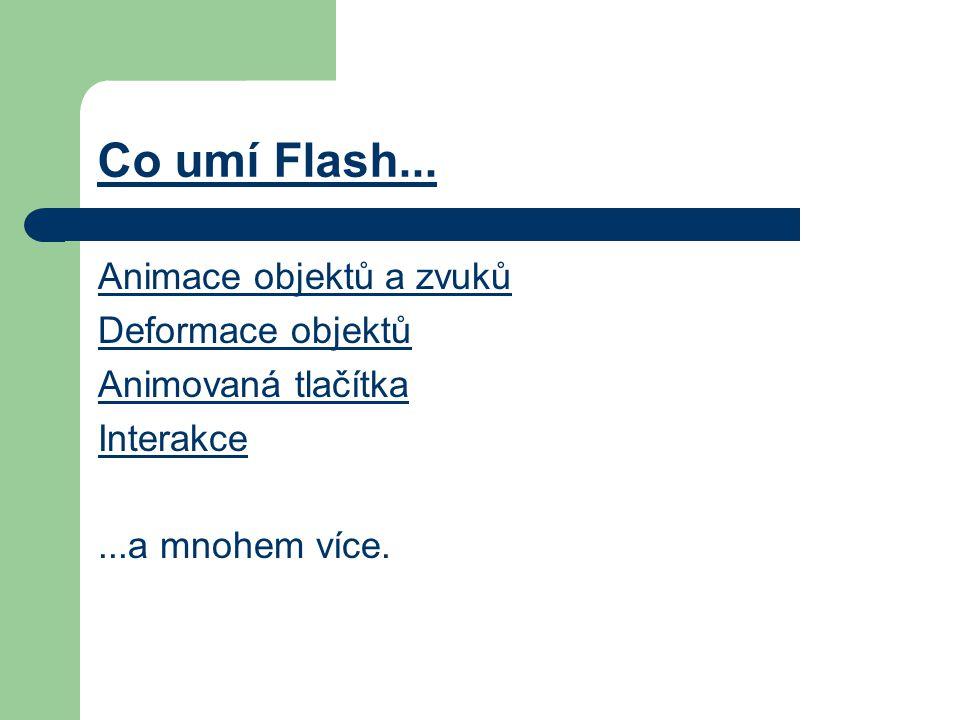 Co umí Flash...