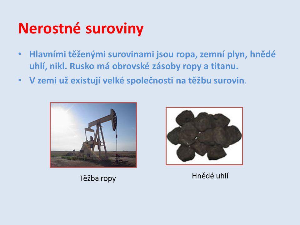 Nerostné suroviny Hlavními těženými surovinami jsou ropa, zemní plyn, hnědé uhlí, nikl. Rusko má obrovské zásoby ropy a titanu. V zemi už existují vel