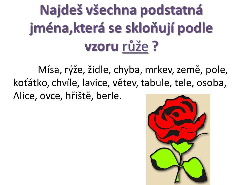 Najdeš všechna podstatná jména,která se skloňují podle vzoru růže .