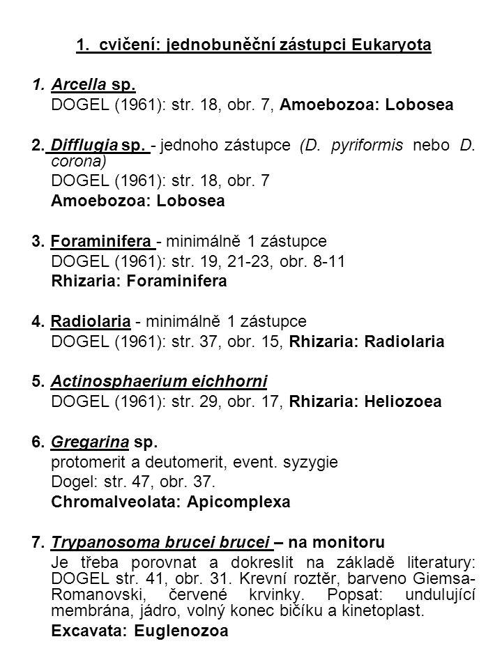 1. cvičení: jednobuněční zástupci Eukaryota 1.Arcella sp. DOGEL (1961): str. 18, obr. 7, Amoebozoa: Lobosea 2. Difflugia sp. - jednoho zástupce(D. pyr