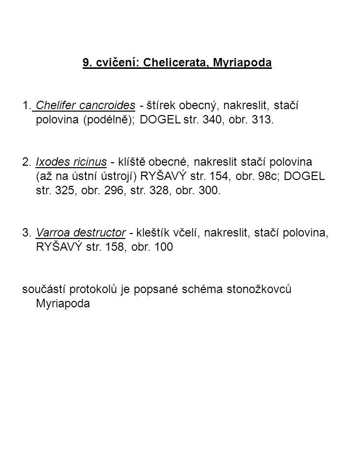 9. cvičení: Chelicerata, Myriapoda 1. Chelifer cancroides - štírek obecný, nakreslit, stačí polovina (podélně); DOGEL str. 340, obr. 313. 2. Ixodes ri