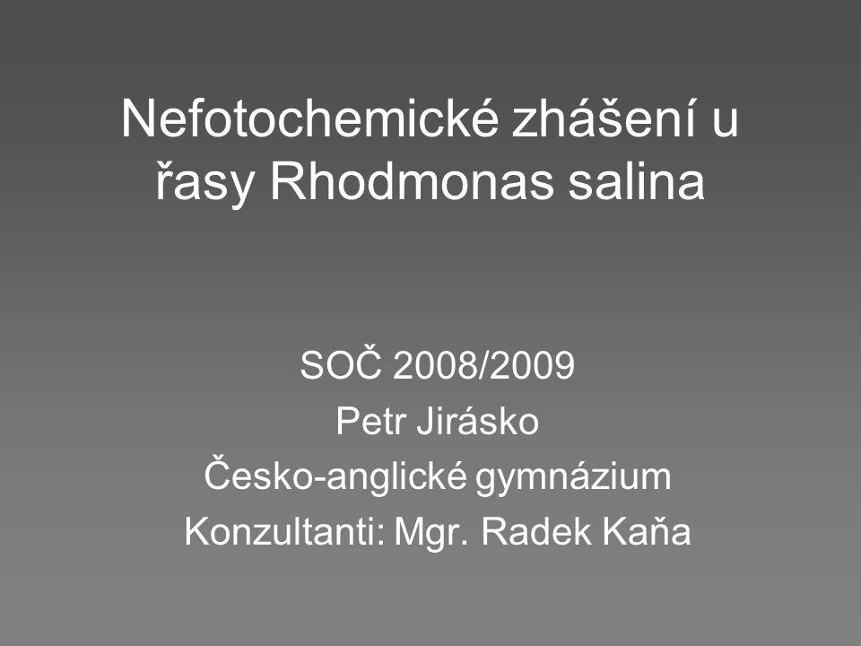Nefotochemické zhášení u řasy Rhodmonas salina SOČ 2008/2009 Petr Jirásko Česko-anglické gymnázium Konzultanti: Mgr. Radek Kaňa