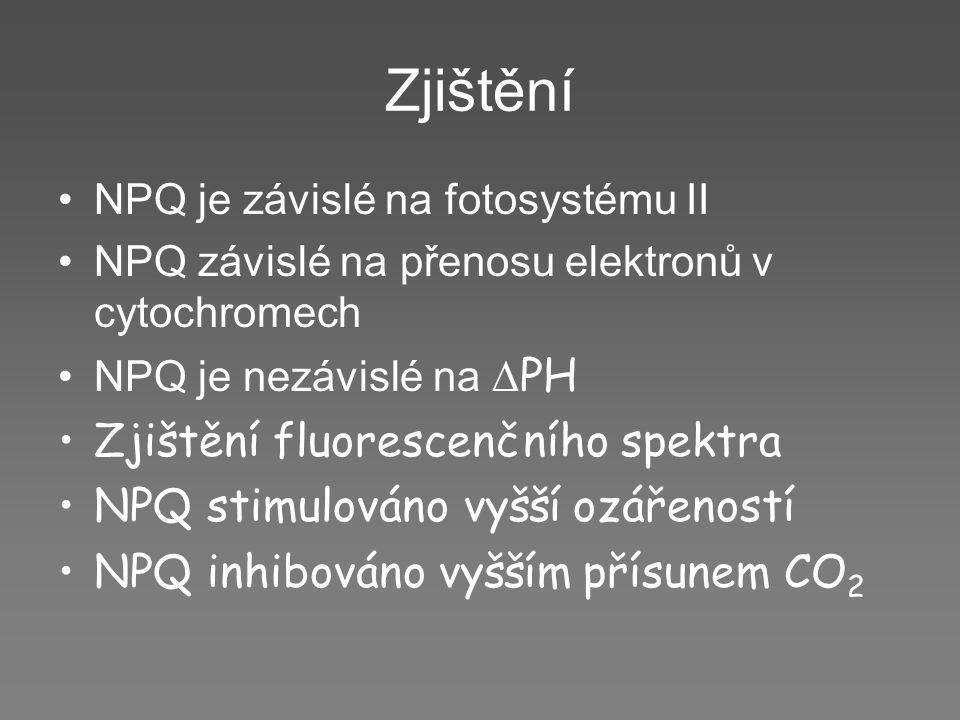 Zjištění NPQ je závislé na fotosystému II NPQ závislé na přenosu elektronů v cytochromech NPQ je nezávislé na  PH Zjištění fluorescenčního spektra NP