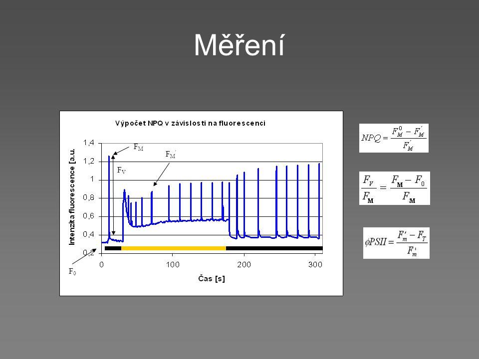 Měření FVFV FMFM F0F0 FM'FM'