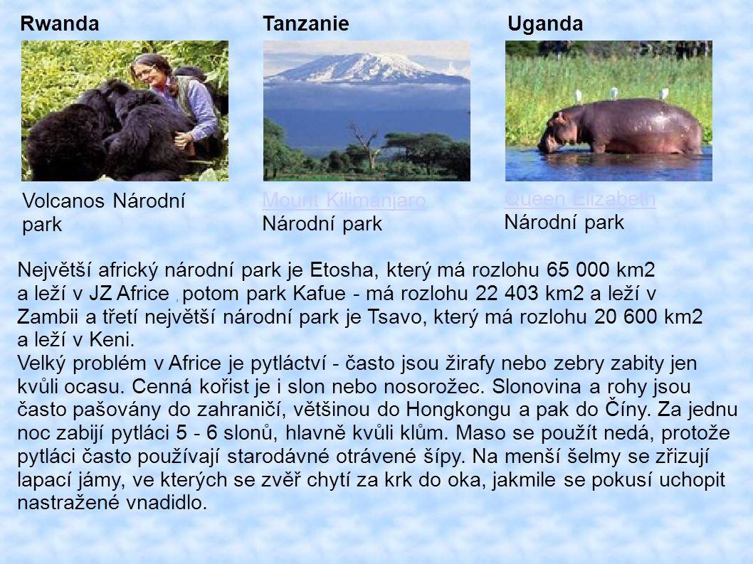 Rwanda Volcanos Národní park Tanzanie Mount Kilimanjaro Národní park Uganda Queen Elizabeth Národní park Největší africký národní park je Etosha, který má rozlohu 65 000 km2 a leží v JZ Africe, potom park Kafue - má rozlohu 22 403 km2 a leží v Zambii a třetí největší národní park je Tsavo, který má rozlohu 20 600 km2 a leží v Keni.