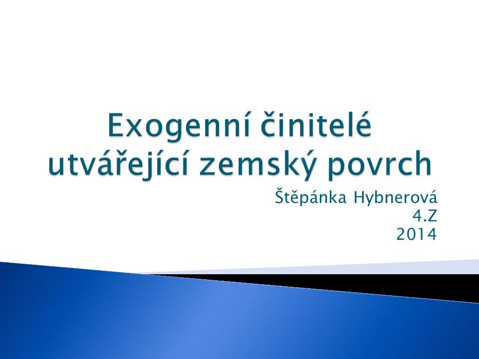 Štěpánka Hybnerová 4.Z 2014