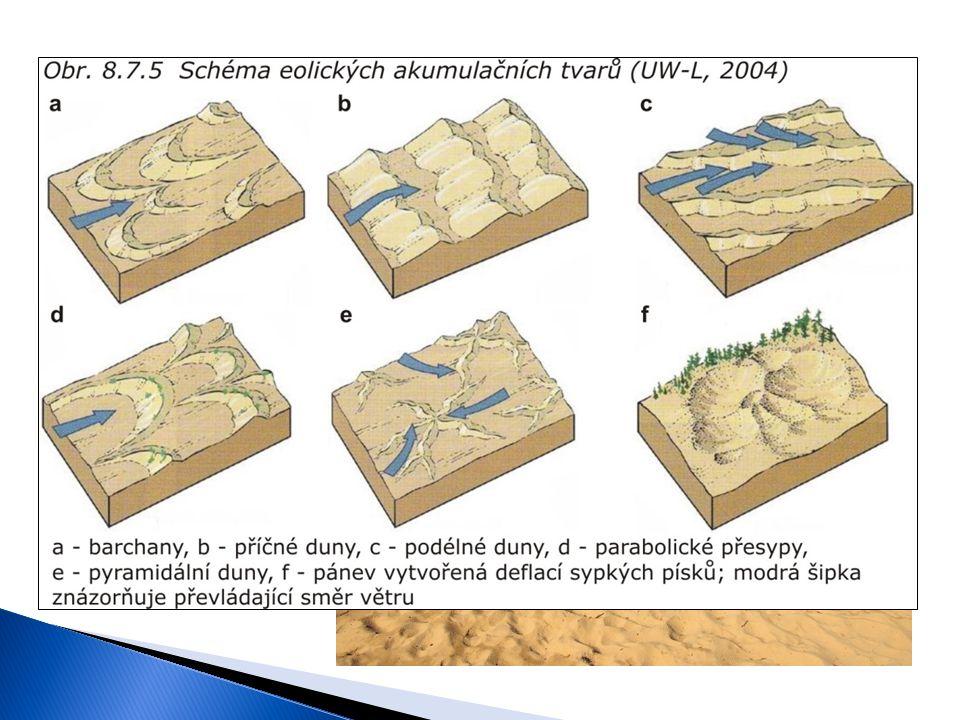  Činnost větru Sedimentace o Písečné duny