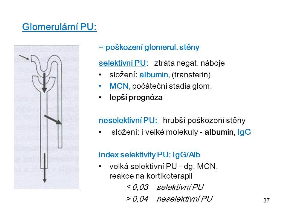 37 Glomerulární PU: = poškození glomerul. stěny selektivní PU: ztráta negat. náboje složení: albumin, (transferin) MCN, počáteční stadia glom. lepší p