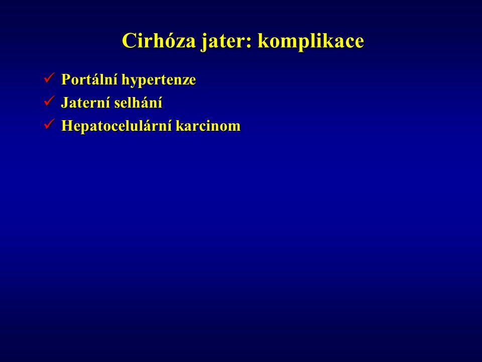 Cirhóza jater: komplikace Portální hypertenze Portální hypertenze Jaterní selhání Jaterní selhání Hepatocelulární karcinom Hepatocelulární karcinom