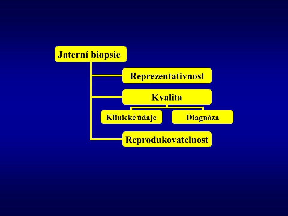Jaterní biopsie Reprezentativnost Kvalita Klinické údajeDiagnóza Reprodukovatelnost