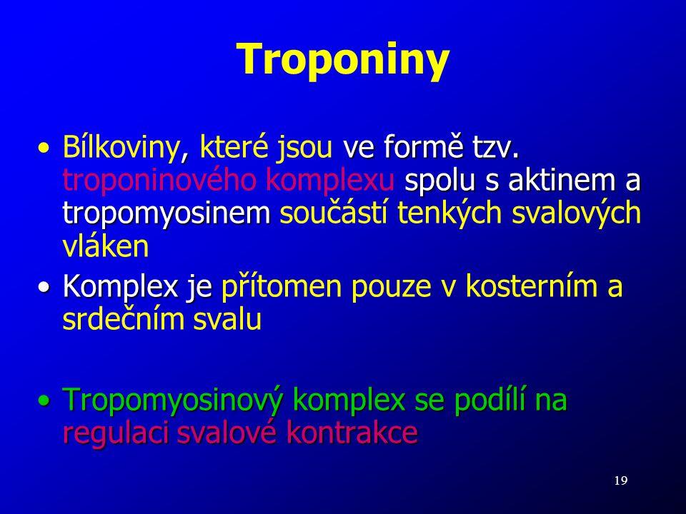 19 Troponiny, ve formě tzv. spolu s aktinem a tropomyosinemBílkoviny, které jsou ve formě tzv. troponinového komplexu spolu s aktinem a tropomyosinem
