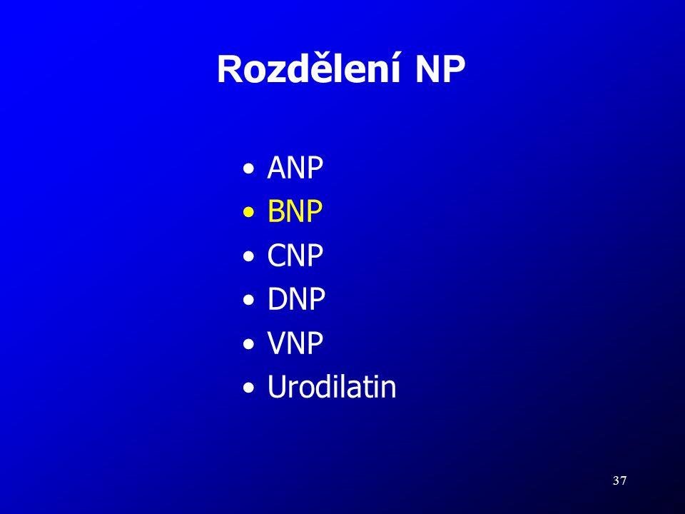 37 R ozdělení NP ANP BNP CNP DNP VNP Urodilatin