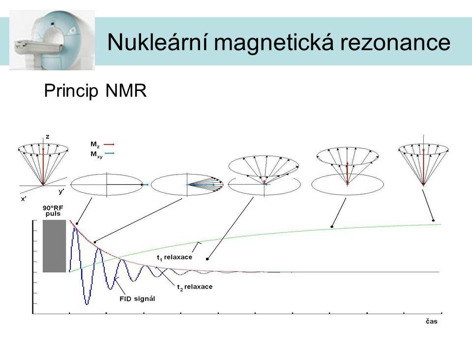 11 Princip NMR Nukleární magnetická rezonance