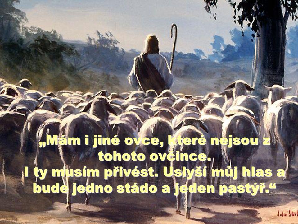 """""""Mám i jiné ovce, které nejsou z tohoto ovčince.I ty musím přivést."""
