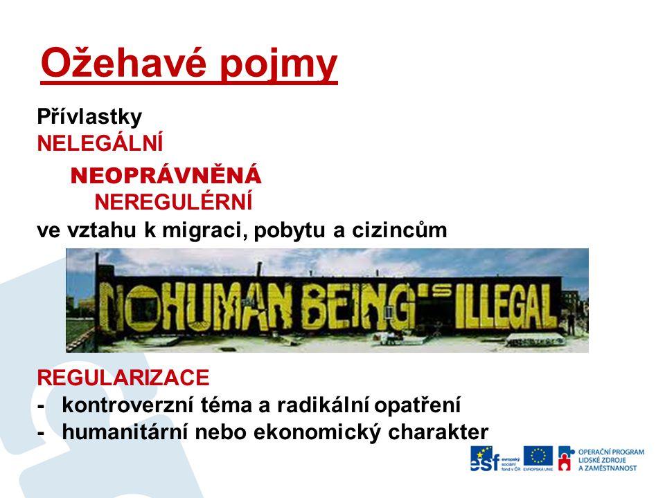 Ožehavé pojmy Přívlastky NELEGÁLNÍ NEOPRÁVNĚNÁ NEREGULÉRNÍ ve vztahu k migraci, pobytu a cizincům REGULARIZACE - kontroverzní téma a radikální opatření - humanitární nebo ekonomický charakter