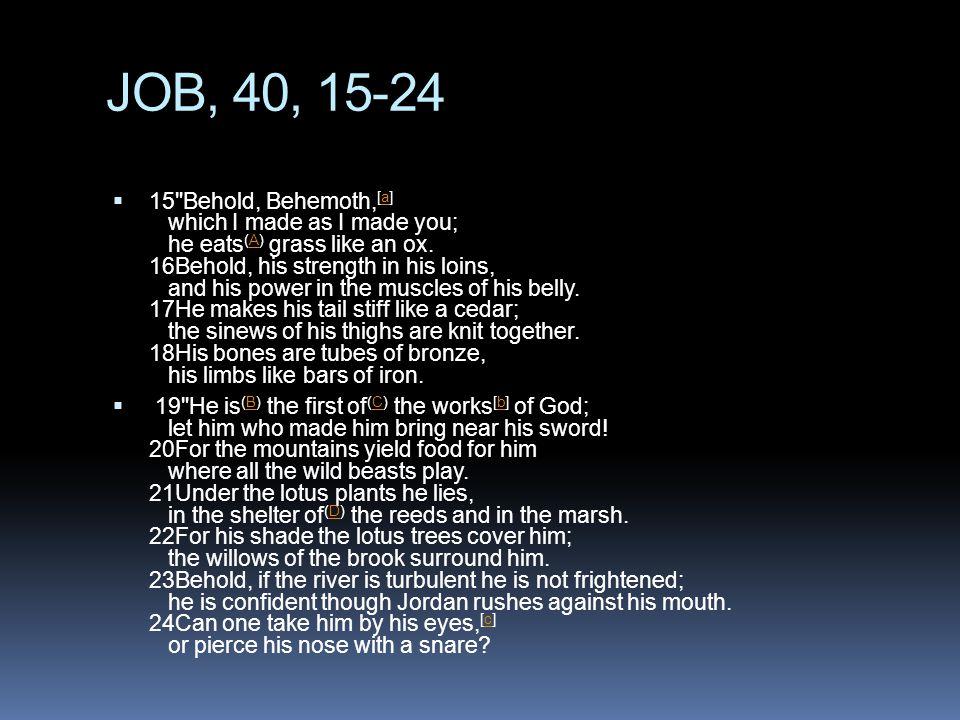 JOB, 40, 15-24  15 Behold, Behemoth, [a] which I made as I made you; he eats (A) grass like an ox.