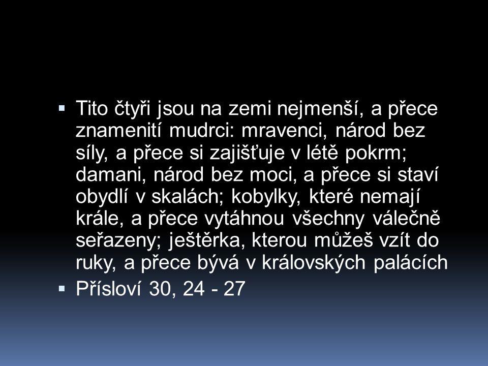 Tito čtyři jsou na zemi nejmenší, a přece znamenití mudrci: mravenci, národ bez síly, a přece si zajišťuje v létě pokrm; damani, národ bez moci, a přece si staví obydlí v skalách; kobylky, které nemají krále, a přece vytáhnou všechny válečně seřazeny; ještěrka, kterou můžeš vzít do ruky, a přece bývá v královských palácích  Přísloví 30, 24 - 27