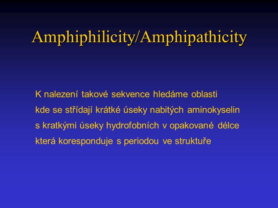 Amphiphilicity/Amphipathicity K nalezení takové sekvence hledáme oblasti kde se střídají krátké úseky nabitých aminokyselin s kratkými úseky hydrofobních v opakované délce která koresponduje s periodou ve struktuře