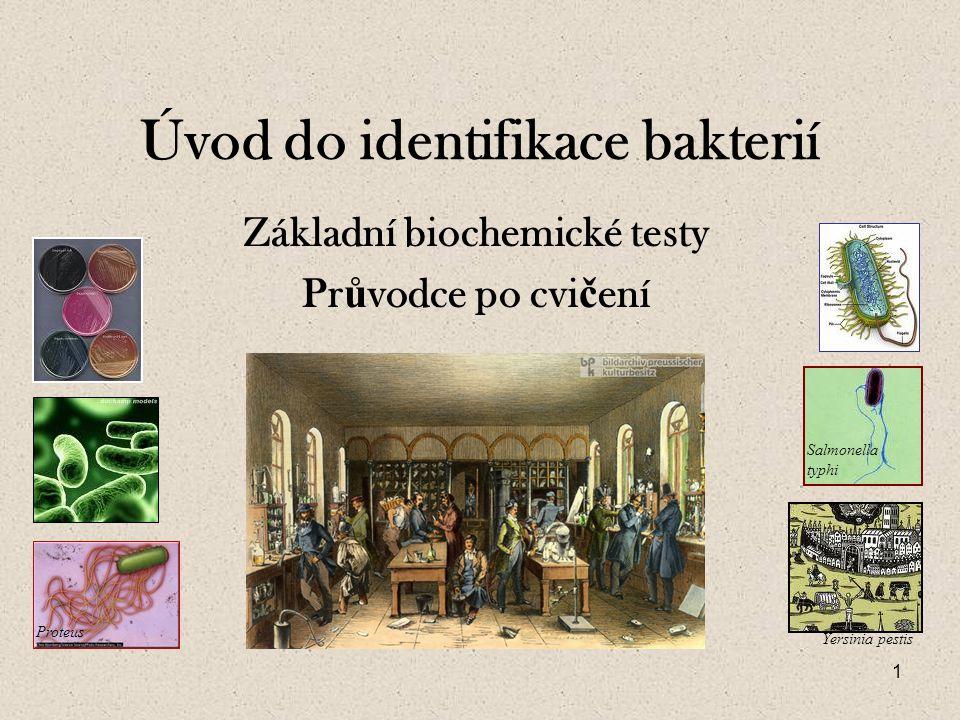 1 Úvod do identifikace bakterií Základní biochemické testy Pr ů vodce po cvi č ení Salmonella typhi Proteus Yersinia pestis