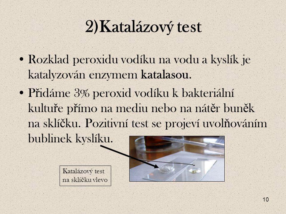 10 2)Katalázový test Rozklad peroxidu vodíku na vodu a kyslík je katalyzován enzymem katalasou.