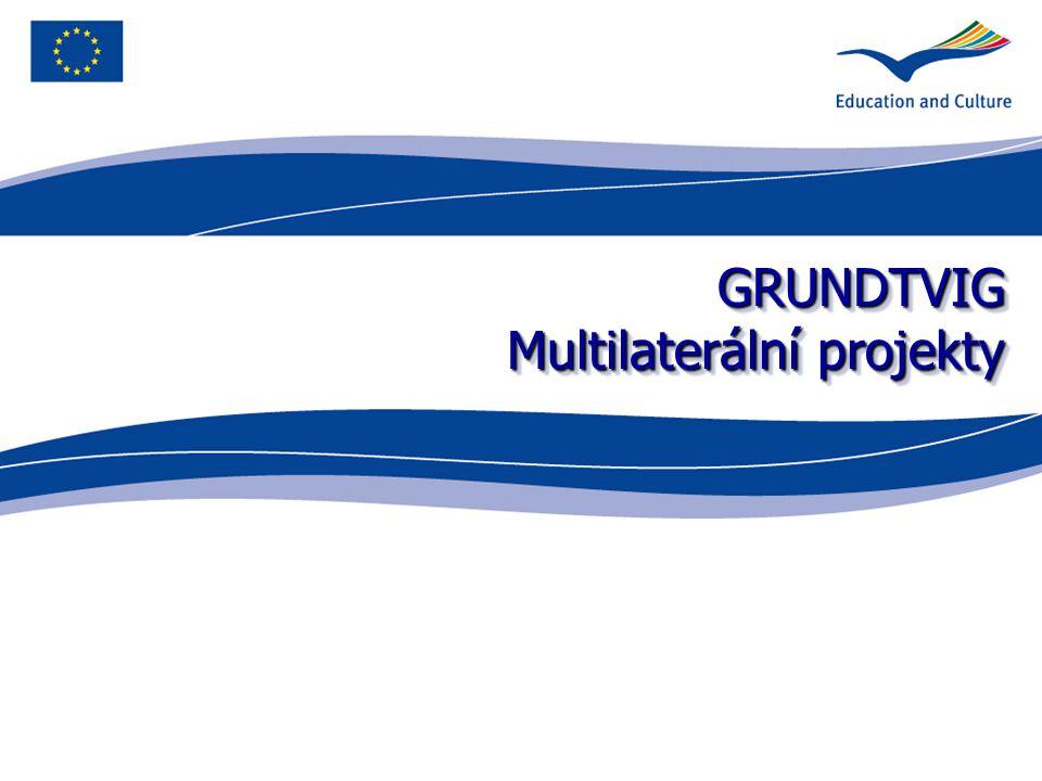 GRUNDTVIG Multilaterální projekty
