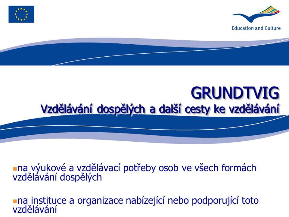 GRUNDTVIG Vzdělávání dospělých a další cesty ke vzdělávání GRUNDTVIG Vzdělávání dospělých a další cesty ke vzdělávání na výukové a vzdělávací potřeby osob ve všech formách vzdělávání dospělých na instituce a organizace nabízející nebo podporující toto vzdělávání