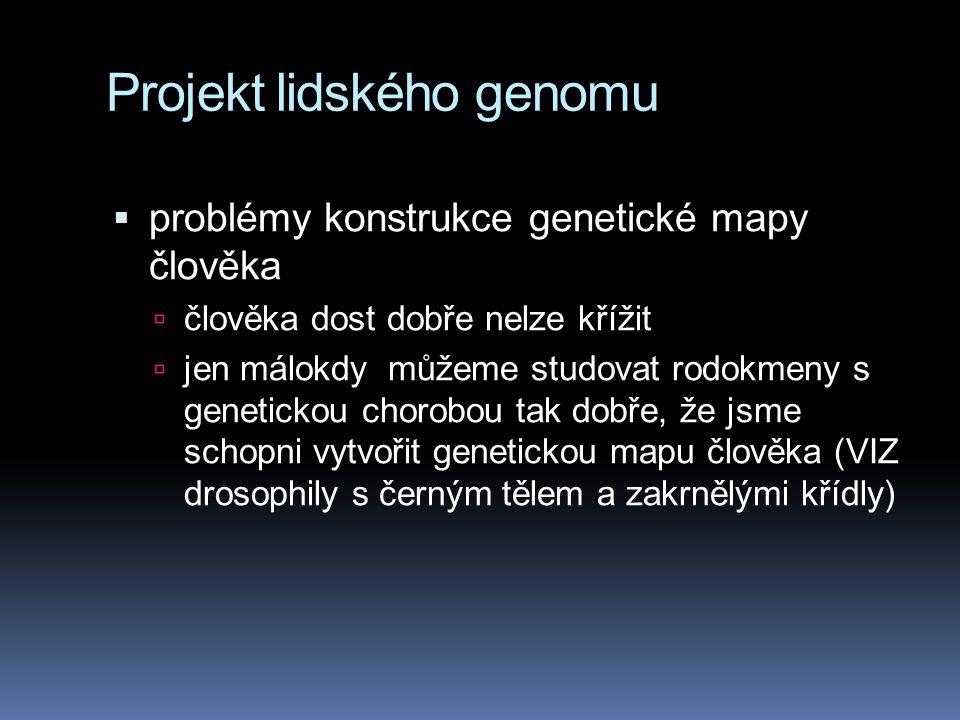 Projekt lidského genomu  problémy konstrukce genetické mapy člověka  člověka dost dobře nelze křížit  jen málokdy můžeme studovat rodokmeny s genet