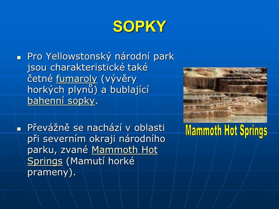 SOPKY Pro Yellowstonský národní park jsou charakteristické také četné fumaroly (vývěry horkých plynů) a bublající bahenní sopky. Pro Yellowstonský nár