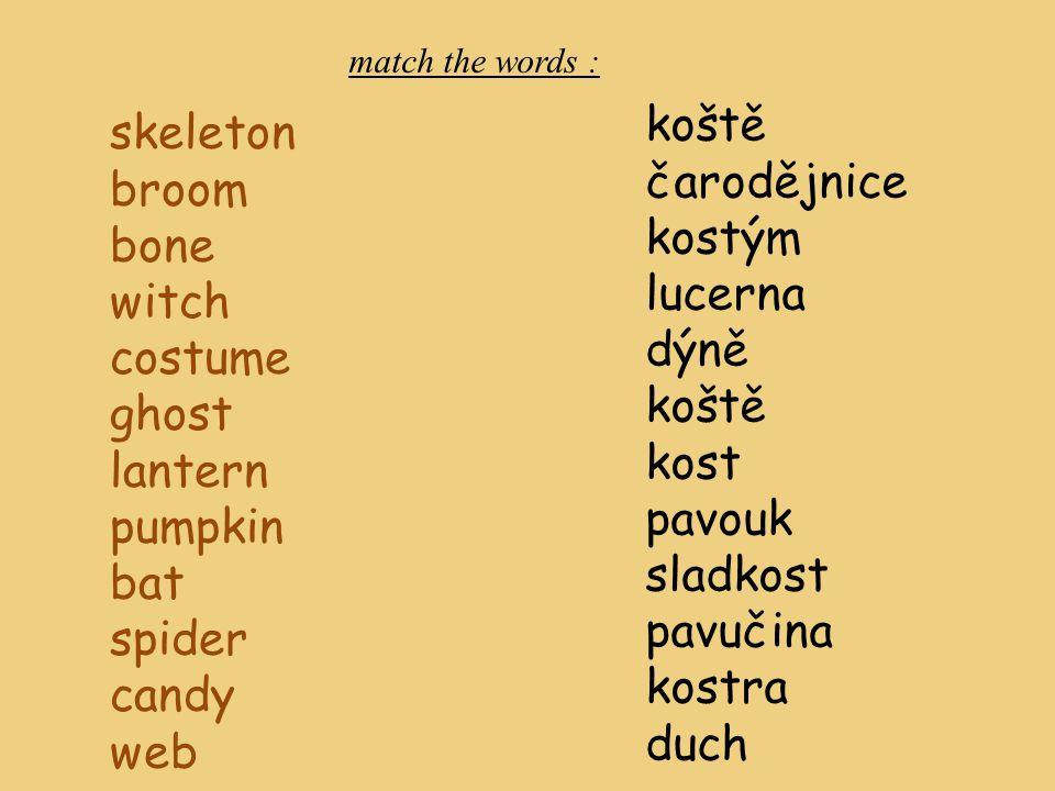 skeleton broom bone witch costume ghost lantern pumpkin bat spider candy web koště čarodějnice kostým lucerna dýně koště kost pavouk sladkost pavučina kostra duch match the words :