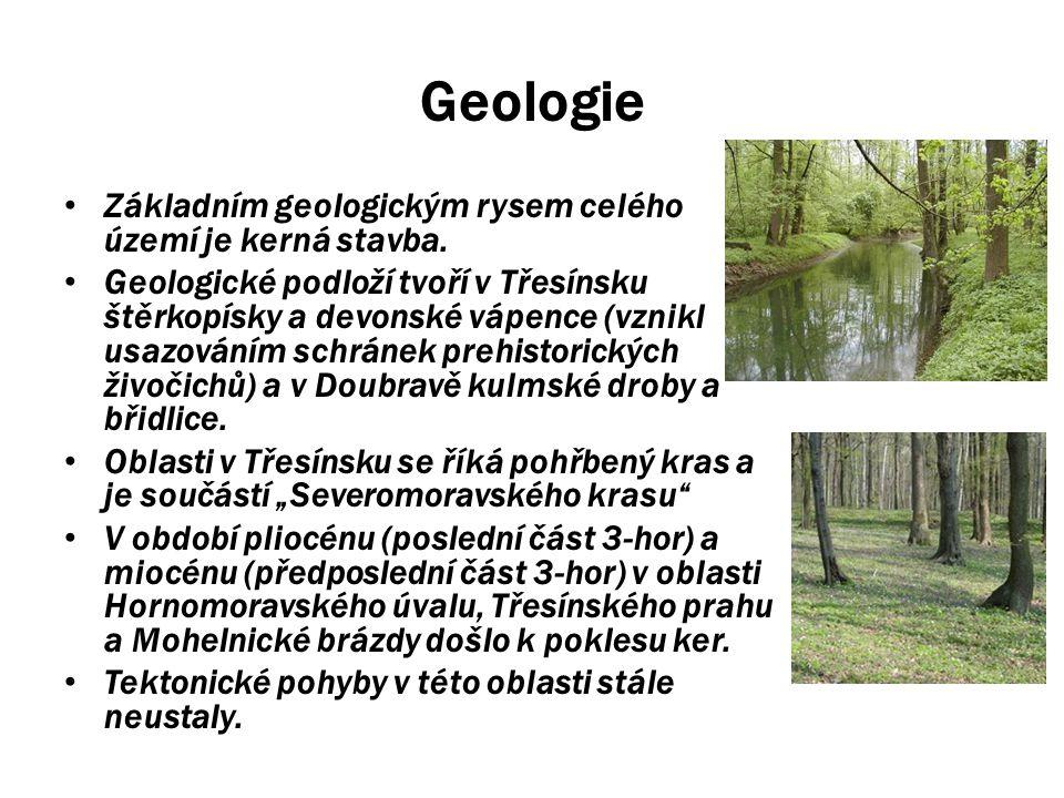 Geologie Základním geologickým rysem celého území je kerná stavba. Geologické podloží tvoří v Třesínsku štěrkopísky a devonské vápence (vznikl usazová