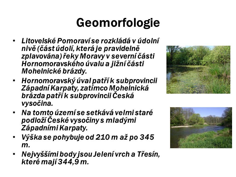 Geomorfologie Litovelské Pomoraví se rozkládá v údolní nivě (část údolí, která je pravidelně zplavována) řeky Moravy v severní části Hornomoravského ú