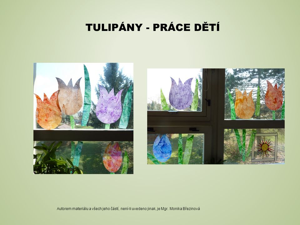 TULIPÁNY - PRÁCE DĚTÍ Autorem materiálu a všech jeho částí, není-li uvedeno jinak, je Mgr. Monika Březinová