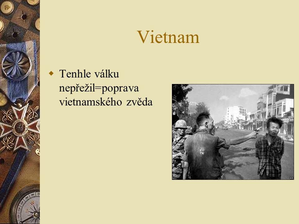 Vietnam  Americké vrtulníky které vysazují vojáky náboje a lékařské pomůcky  Ve Vietnamu byli vrtulníky nejdůležitější autem se tam nedalo projet