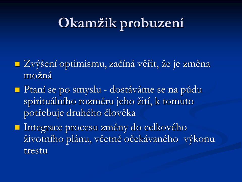 Děkuji za pozornost! vezeni@podaneruce.cz www.povystupu.cz