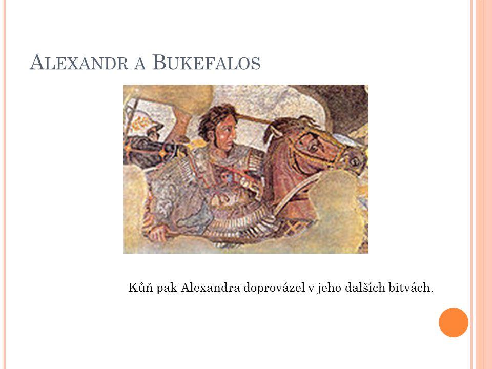 A LEXANDR A B UKEFALOS Kůň pak Alexandra doprovázel v jeho dalších bitvách.