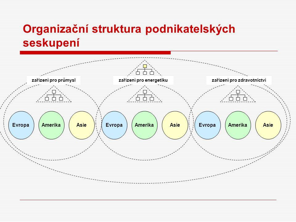 Organizační struktura podnikatelských seskupení Evropa Amerika Asie zařízení pro průmyslzařízení pro energetikuzařízení pro zdravotnictví