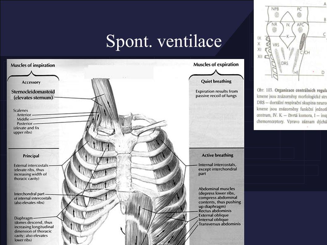MV – řízená ventilace ● bez dech.aktivity (hluboká analgosedace) – PCV : bezpečnější, – VCV : snaha o korekci PaCO2 – (Triggerovaný dech)