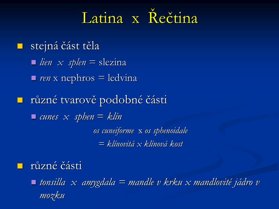 Latina x Řečtina stejná část těla stejná část těla lien x splen = slezina lien x splen = slezina ren x nephros = ledvina ren x nephros = ledvina různé